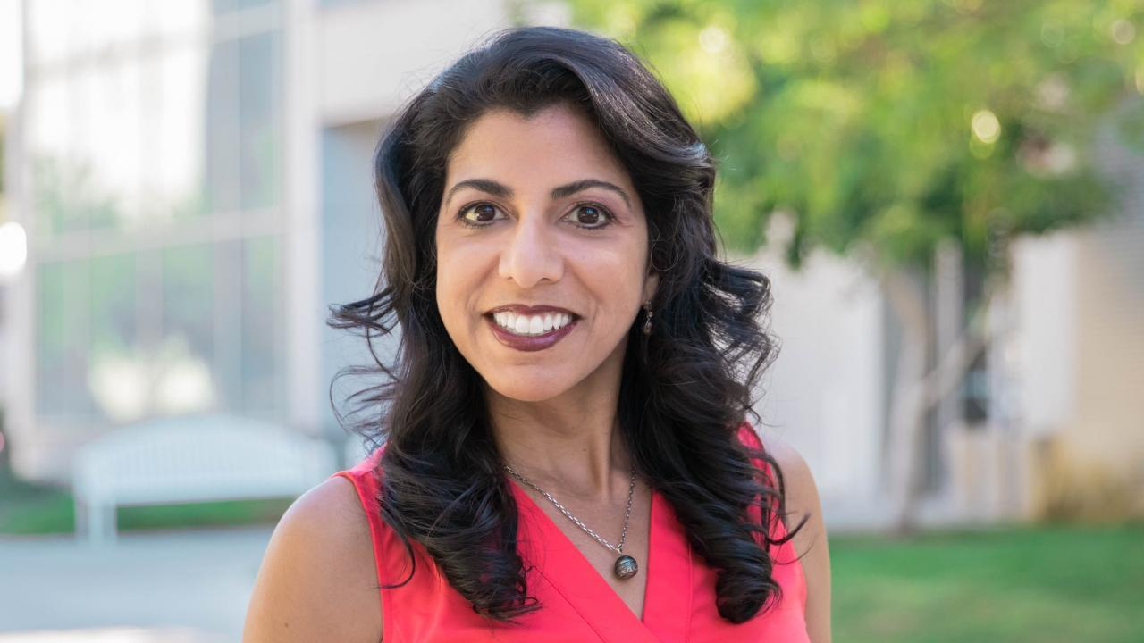 uc davis computer science mechanical aerospace engineering professor raissa dsouza science